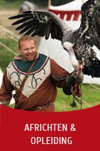 Valkerij Ardanwen - africhten & opleiden