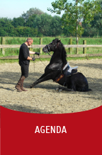 Valkerij Ardanwen - agenda