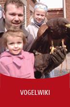 Valkerij Ardanwen - Vogelwiki